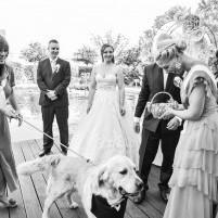 Szertartásvezető, Polgári szertartás, Esküvő szertartás | Judit & Sanyi